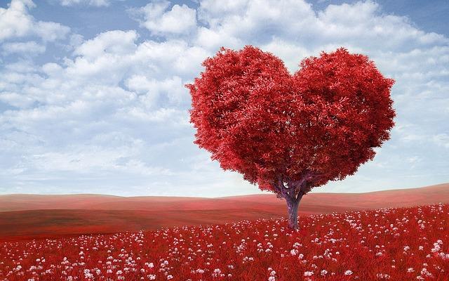 Valentine's Quiz Questions